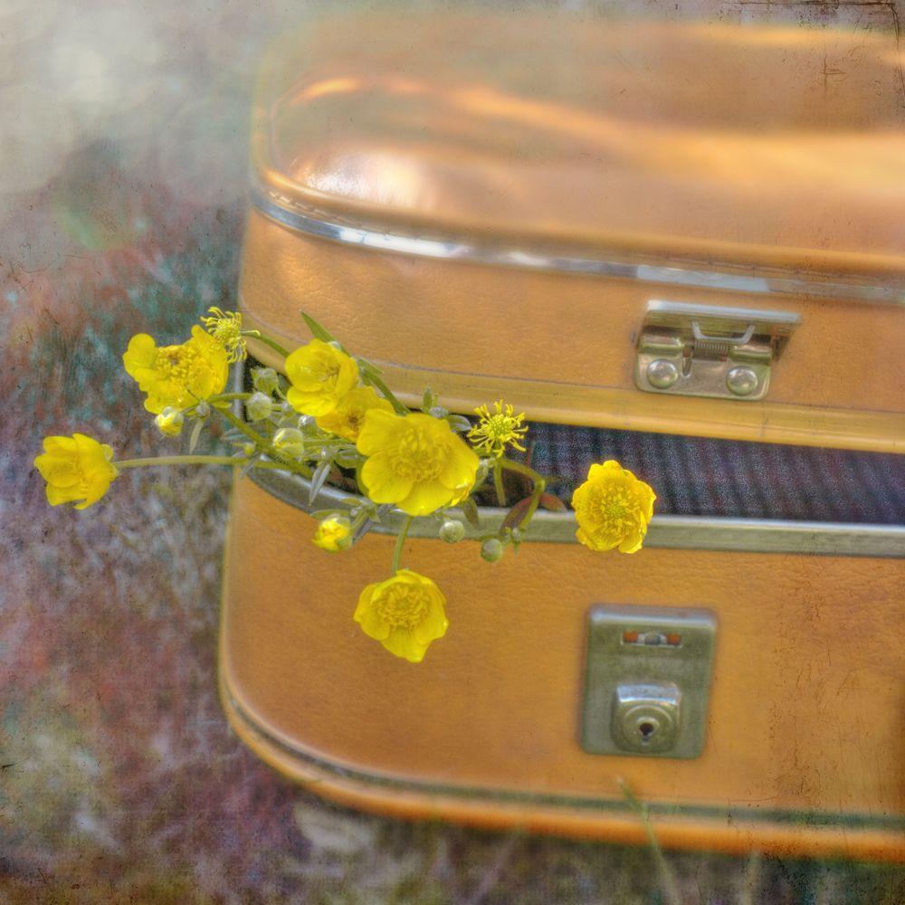 Mooie suitcase....met boterbloemen!