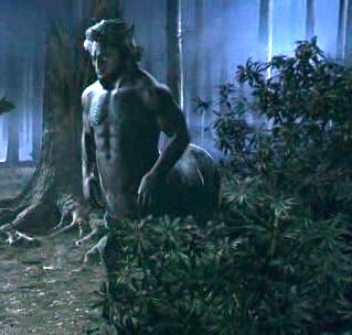 Firenze | Harry potter witch, Centaur harry potter, Harry potter