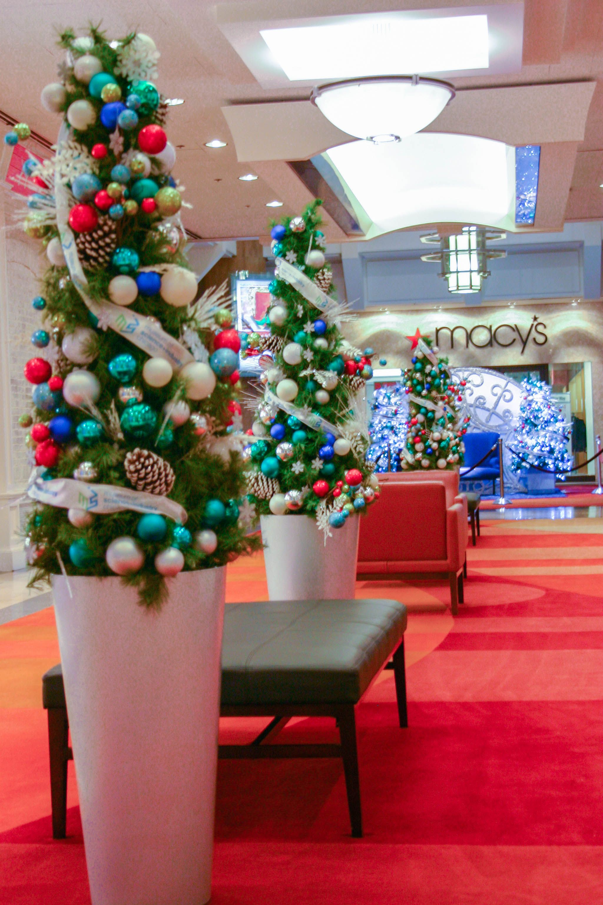 Trees Are Lined Up Through The Mall For More Information On