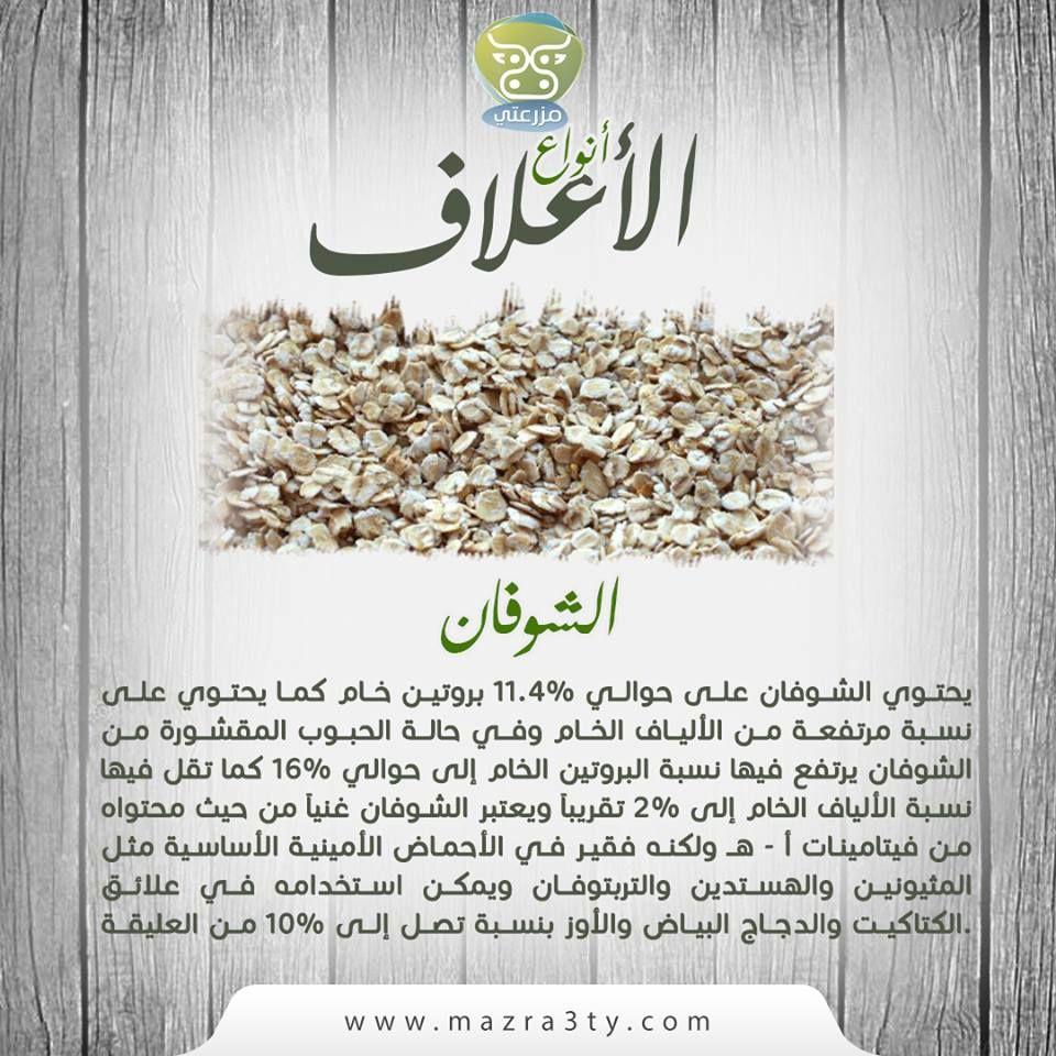يحتوي الشوفان على حوالي 11 4 بروتين خام كما يحتوي على نسبة مرتفعة من الألياف الخام وفي حالة الحبوب المقشورة من الشوفان يرتفع فيه Health Tips Health Condiments