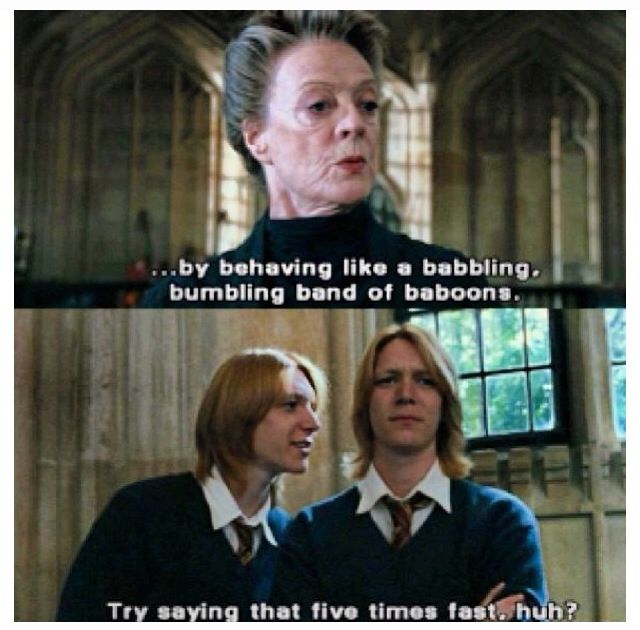 Harry Potter Quote Harry Potter Funny Harry Potter Series Fred And George Weasley