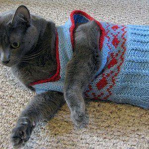 Preppy Cat Vest Dog Stuff Pinterest Knitting Knitting