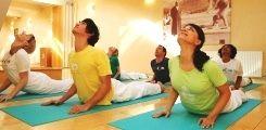 Sivananda Yoga Wien: Yoga-Kurse, Yoga für Anfänger und ...