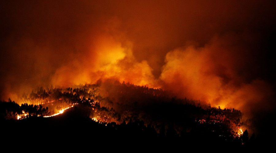 Biggest Tragedy In Years At Least 62 Killed 59 Injured In Portugal Forest Fires Photos Video Forest Fire Fire Forest