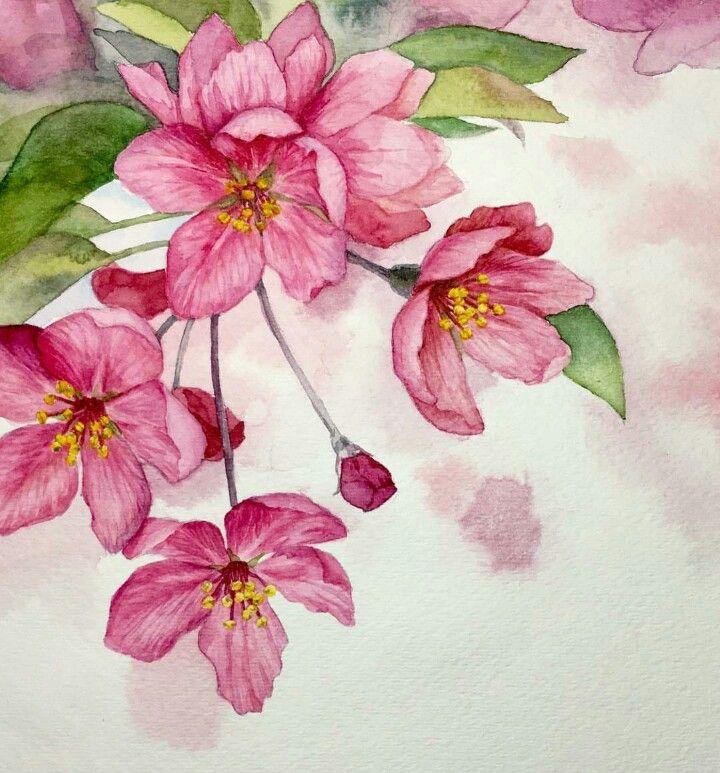 pingl par angel aa sur flowers pinterest aquarelles et fleur. Black Bedroom Furniture Sets. Home Design Ideas