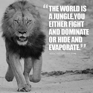 100 Lion Quotes To Boost Your Motivation