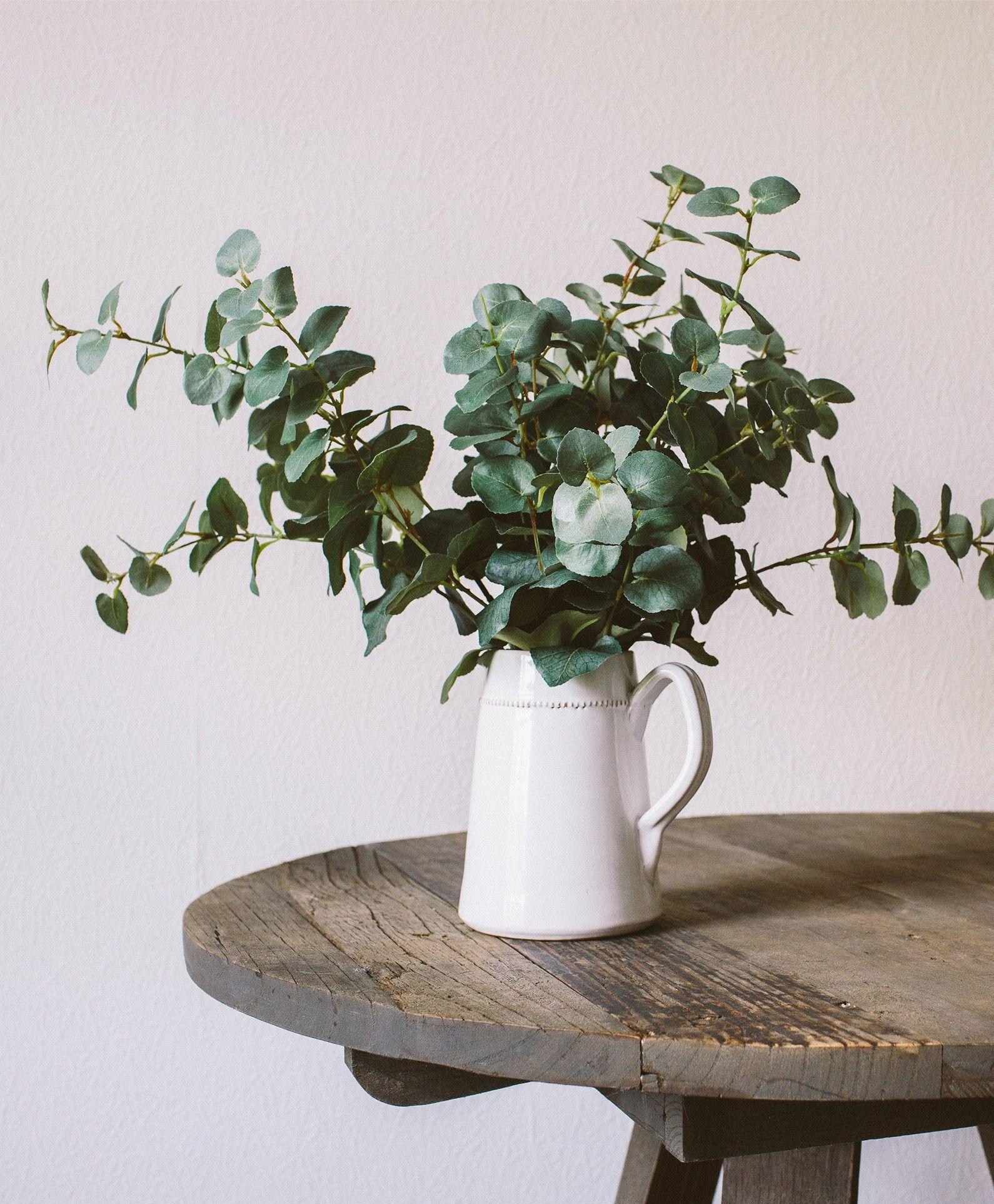 faux eucalyptus plante pinterest. Black Bedroom Furniture Sets. Home Design Ideas