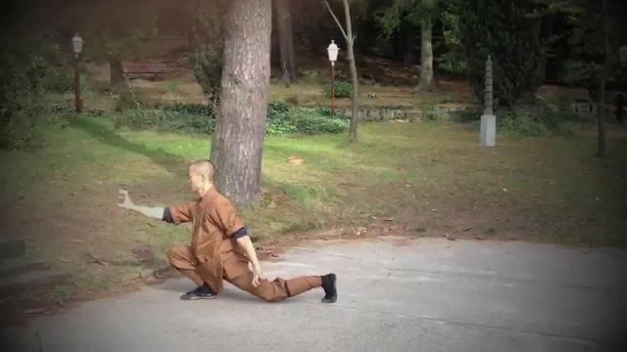 Shaolin Yi Jin Jing | 少林易筋经 (performed by Master Shi