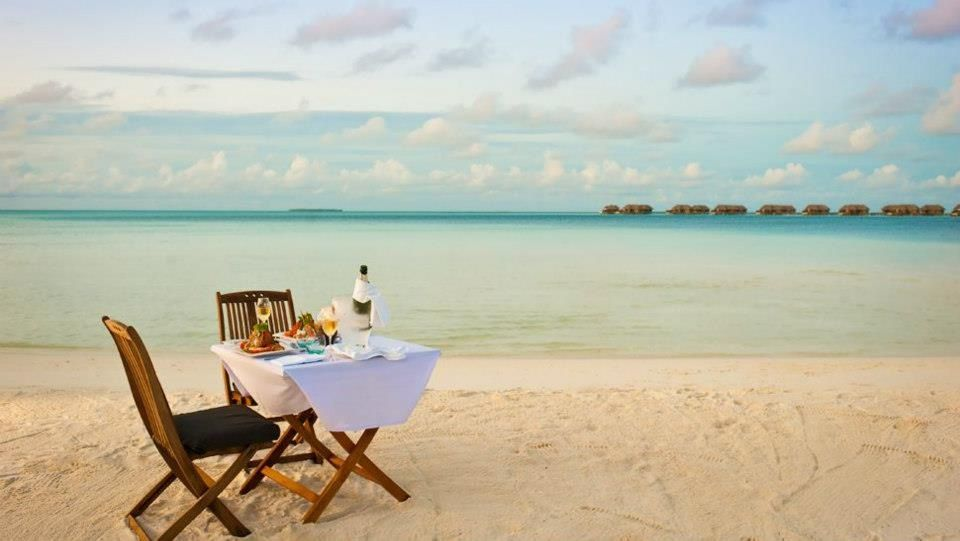 #Lunch on the #beach http://blog.thewolfpacksociety.com/