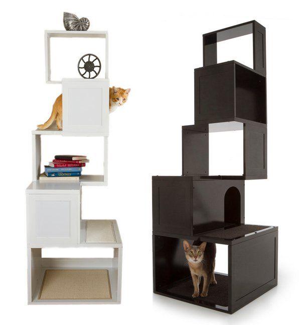 Designer Möbel Und Accessoires Für Haustiere Angebracht | Alles