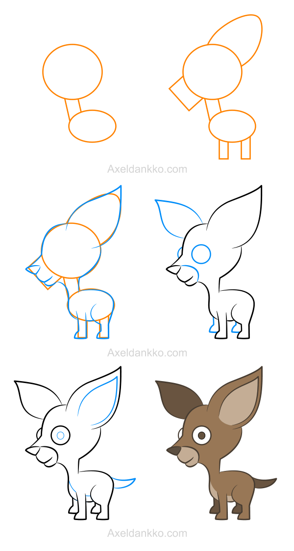 How to draw a chihuahua - Comment dessiner un chihuahua