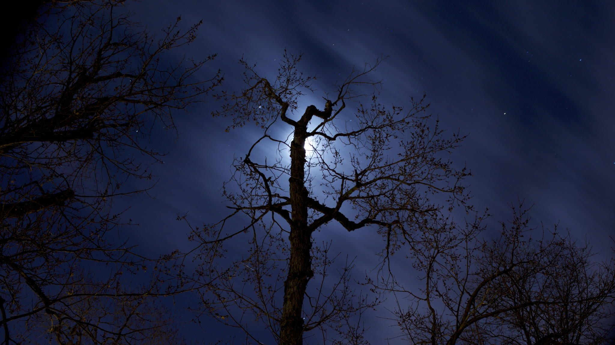 Moonlight by Neil Crowley on 500px