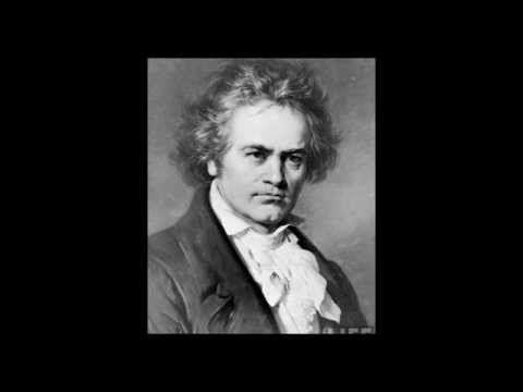 Ludwig van Beethoven - 9th Symphony, 2nd Movement - Molto