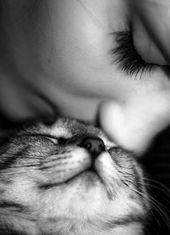 Photo of 6 gatos alérgicos para amigos hipersensibles de terciopelo