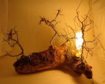 Original Driftwood Desk Lamp