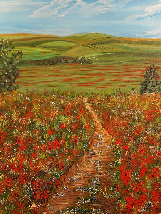 Poppy Fields with many layers of rolling hills. Painted
