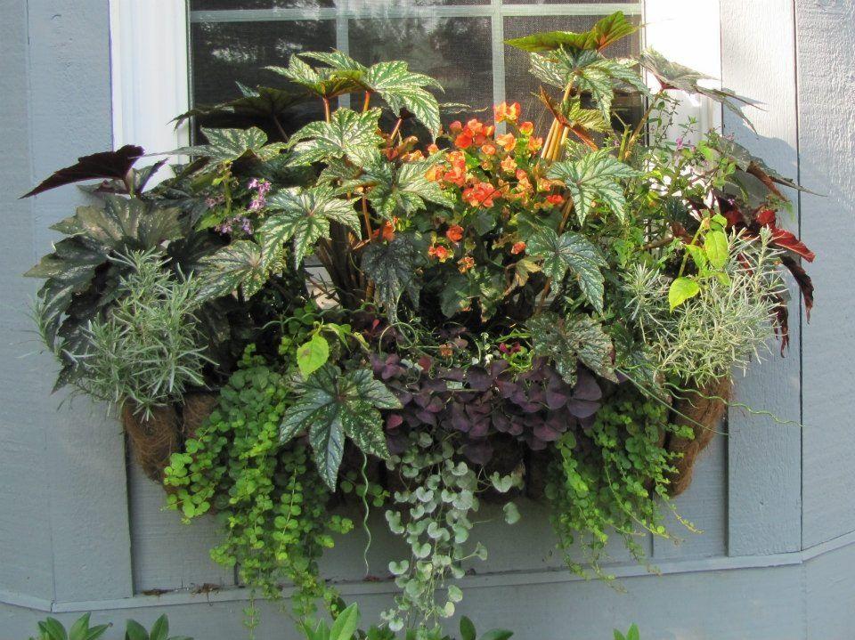 hay rack window planters