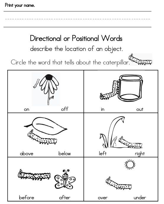 Position Words Worksheets: Printables  Position Worksheets For Kindergarten  Gozoneguide    ,