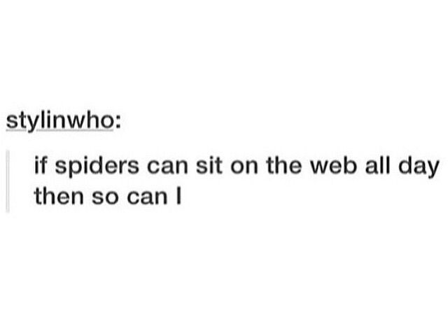 If Spiders Can Sit on the Web all day Then so can I
