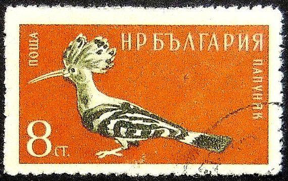 Upupa uccello Upupa epops Russia-Handmade del francobollo arte 13317