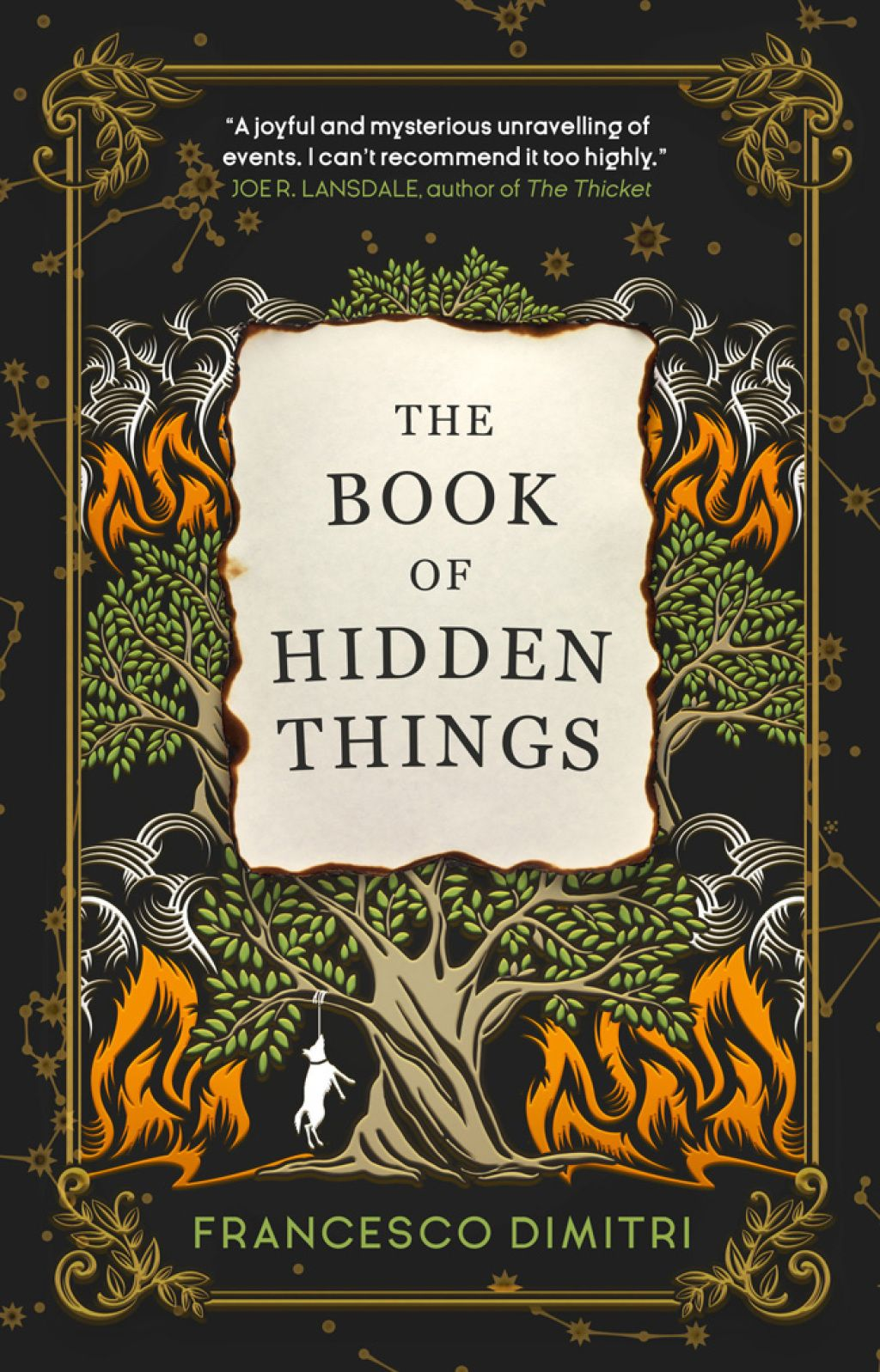 The Book of Hidden Things (eBook)
