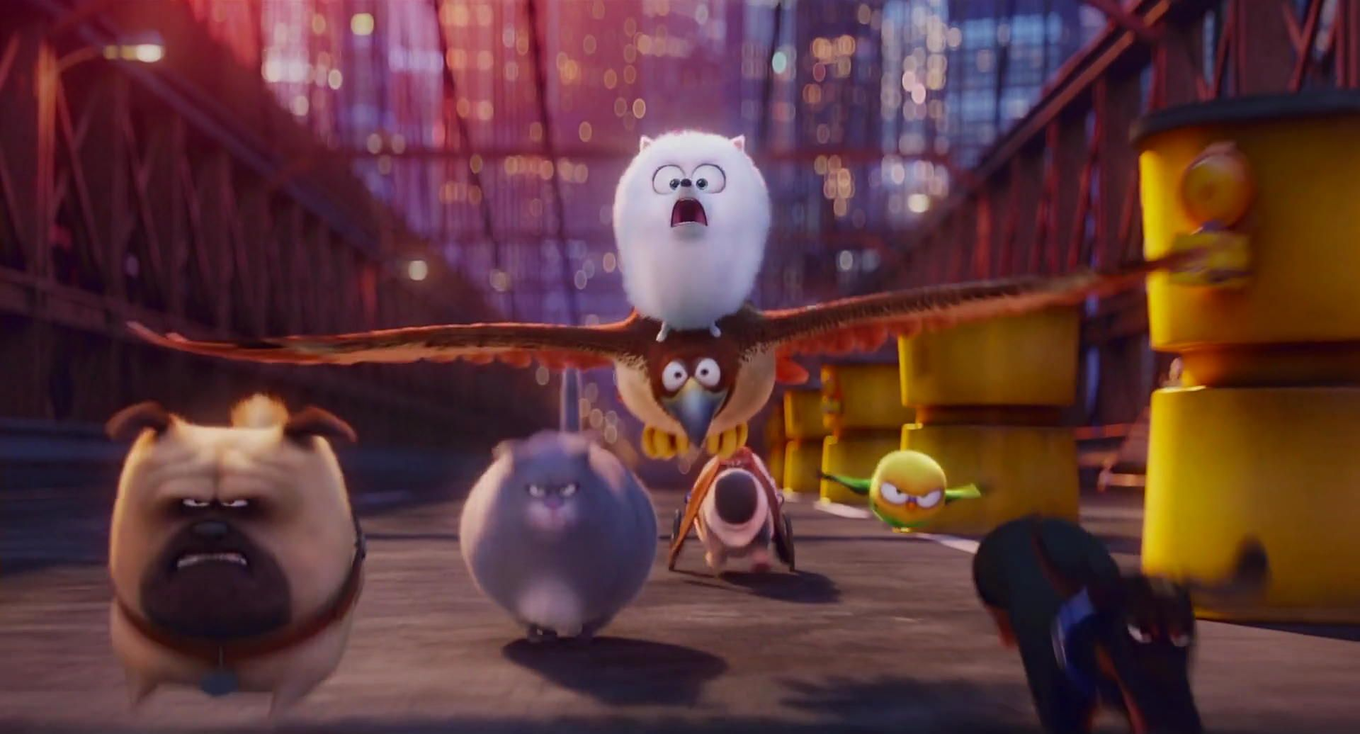 Screencap Gallery For The Secret Life Of Pets 2016 1080p Bluray Illumination Entertainment Taking Place In A Manhatt Secret Life Of Pets Secret Life Pets