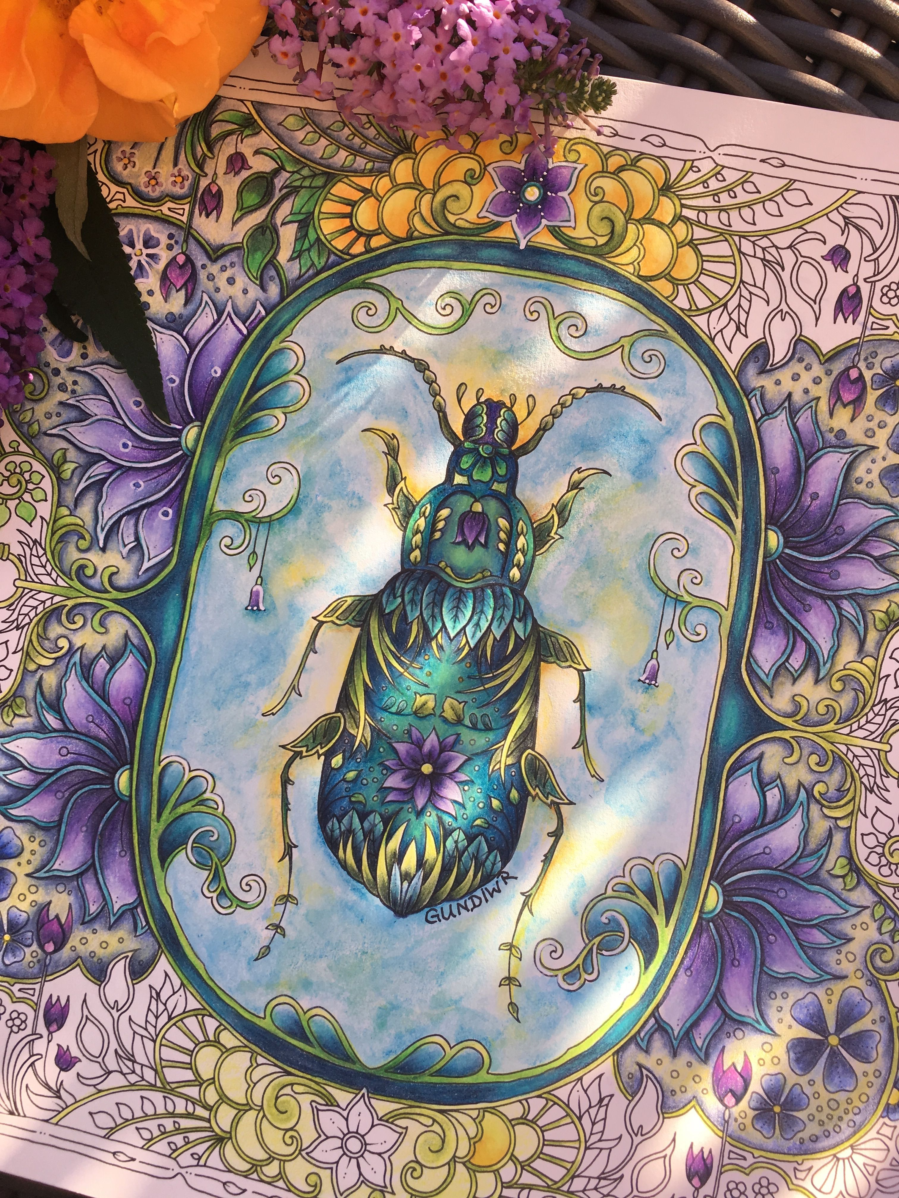 Bug from world of flowers johanna basford colored by