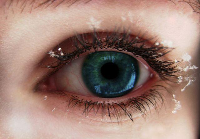 Favorite Things | My favorite things, Eyelashes, Human eye