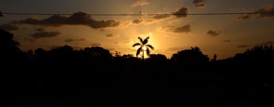 """E o nascer do sol na Flórida hein...? Deve ser por isso que eles chamam de """"Sunrise State"""""""
