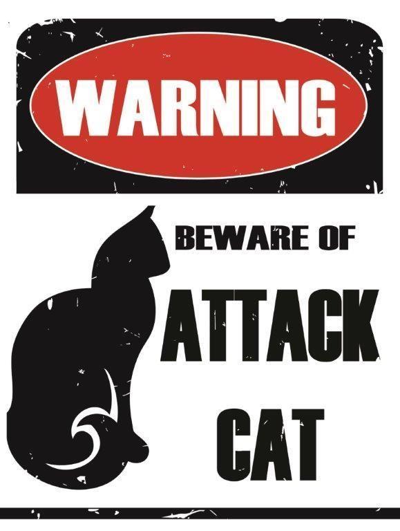 55e531f221 Warning Beware of Attack Cat Metal Sign