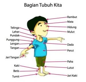 Pin Di Malaysia