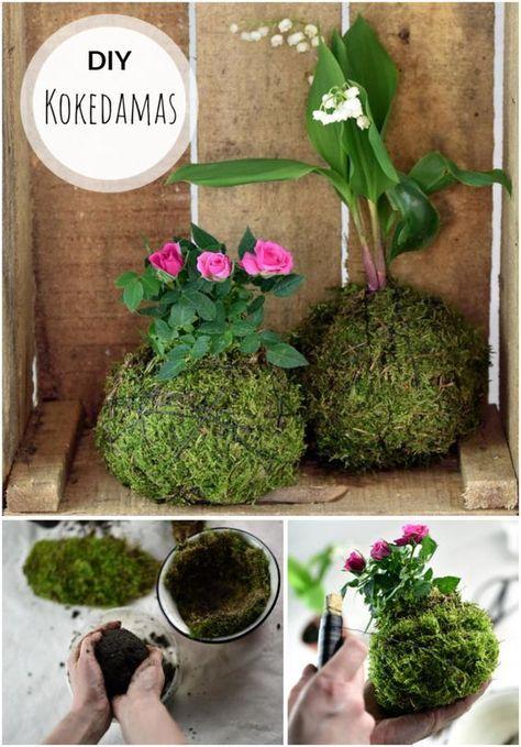 kleiner gr ner planet kokedama diy deko pinterest garten pflanzen und moos. Black Bedroom Furniture Sets. Home Design Ideas