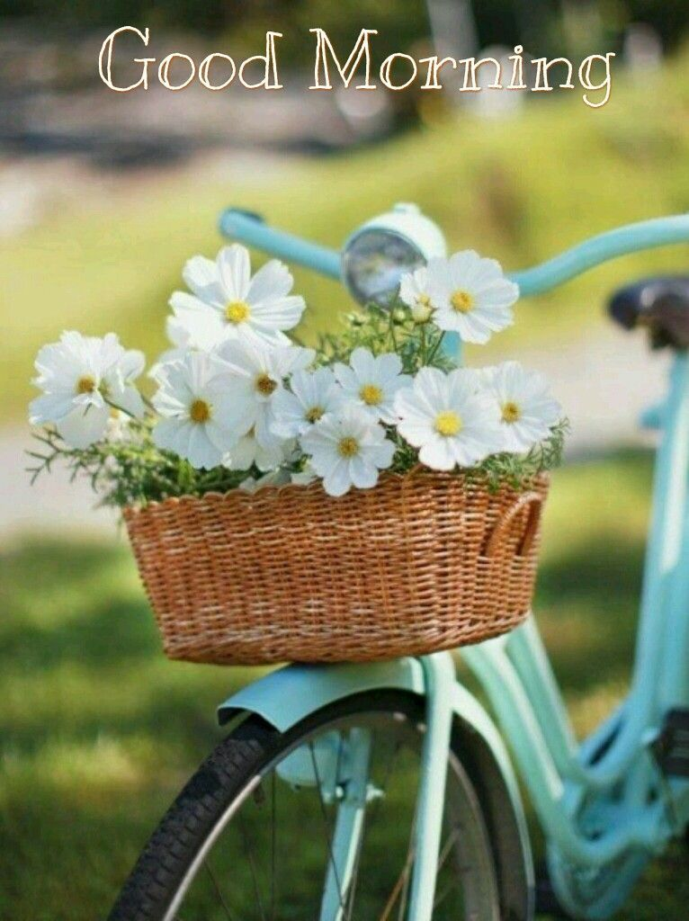 Chrysanthemum Bell Bicycle Horns Bike Daisy Flower Kids Girls Cycling Socia  @es
