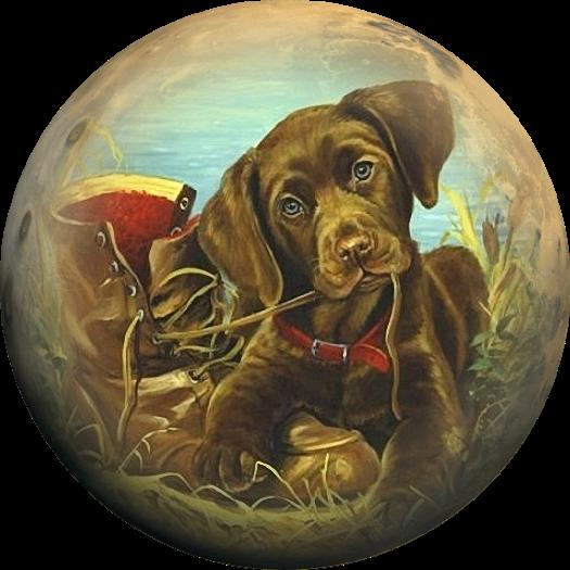ответы круглые картинки собак говорим том