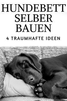 Hundebett selber bauen 4 tolle ideen aus holz diy hund pinterest hunde bett hunde und - Hundebett ideen ...