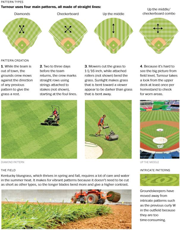 Baseball Diamonds Baseball Diamond Baseball Phillies Baseball