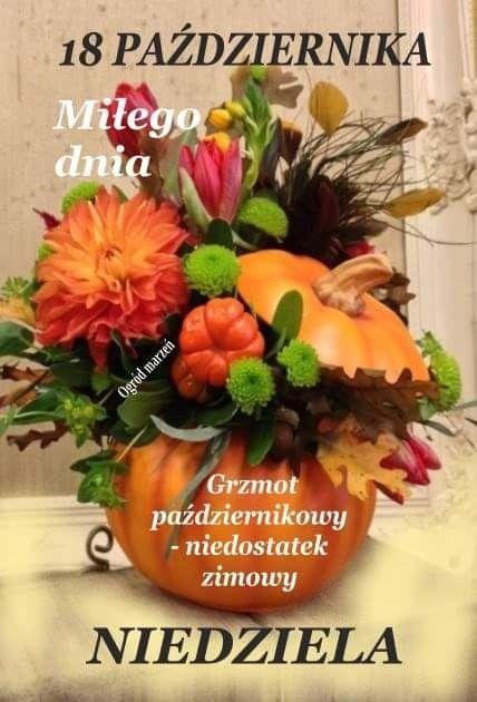 Pin By Jozef On Niedziela Happy Sunday Sunday Plants