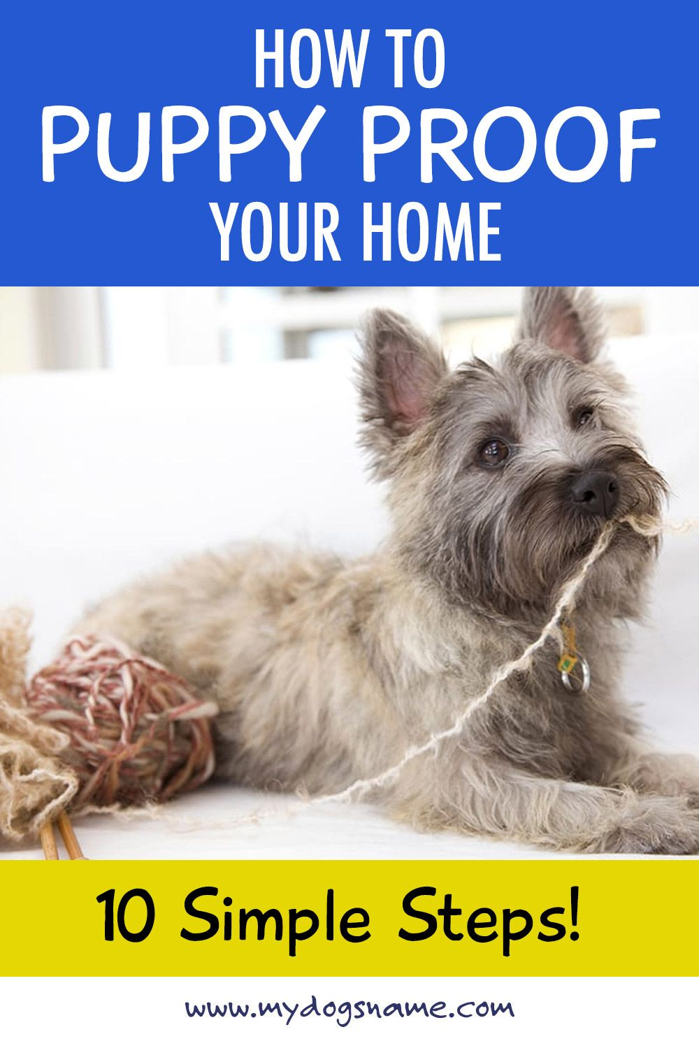 How To Puppy Proof Your Home References