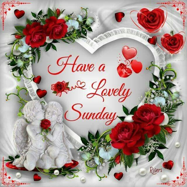 Have A Lovely Sunday Good Morning Sunday Sunday Quotes Blessed Sunday Good  Morning Sunday Sunday Pictures