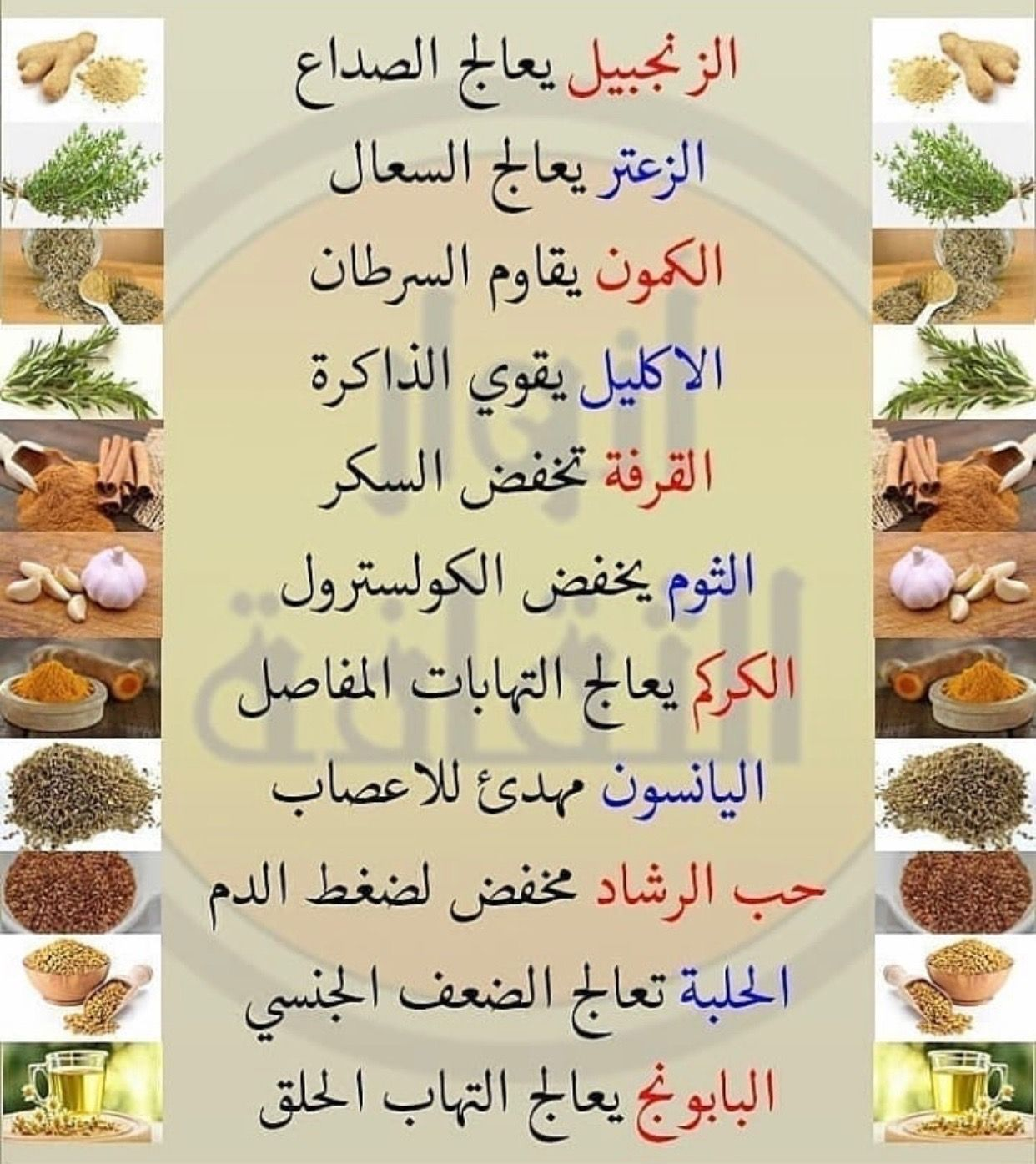 Pin By Lolea Jaaf On Your Doctor Health Fitness Nutrition Health Facts Food Health And Nutrition