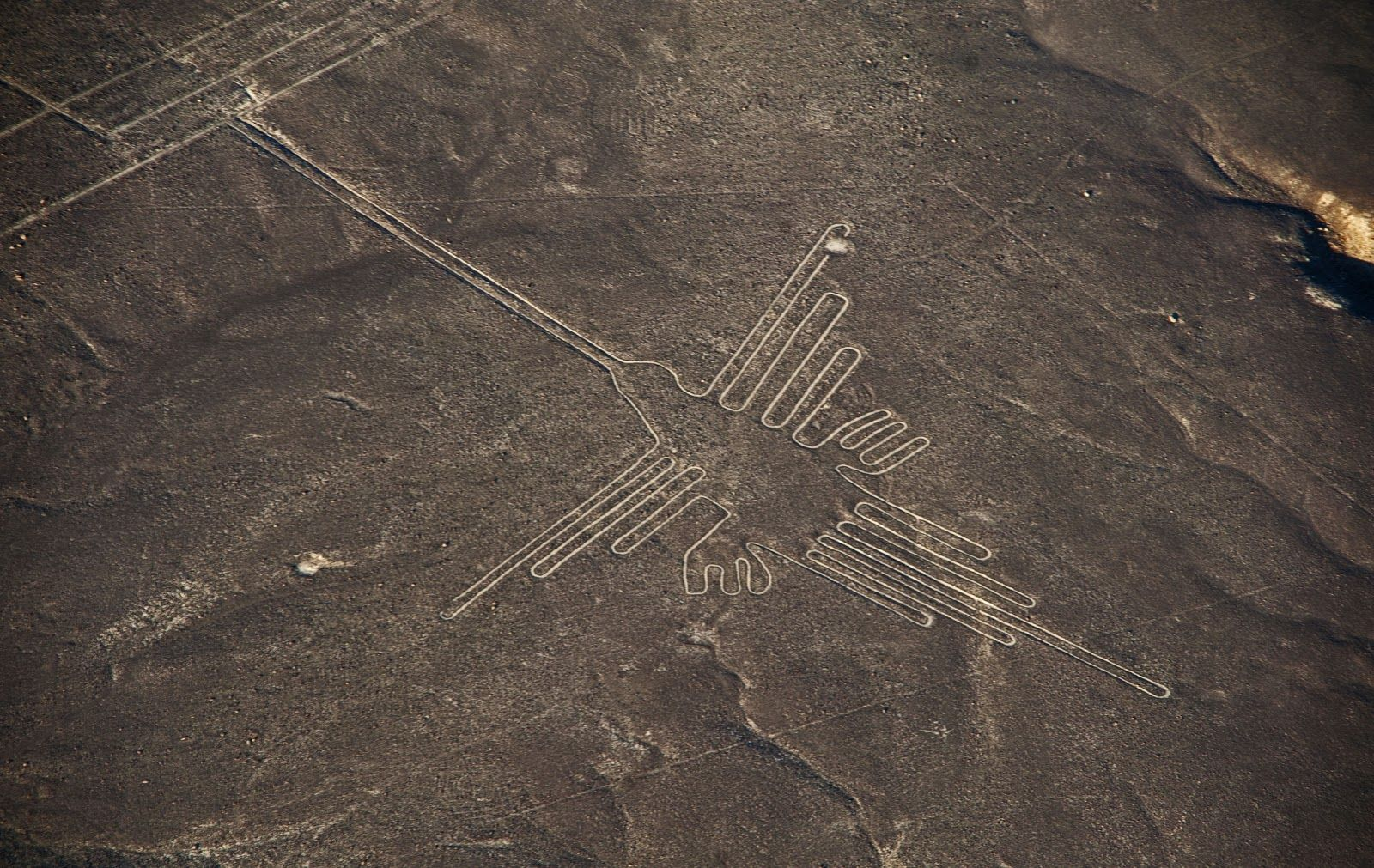 Colibri  - Nazca line of the hummingbird