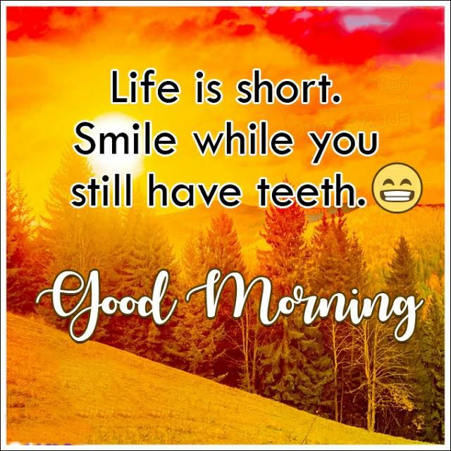 Good Morning Quotes in 2020 | Good morning quotes