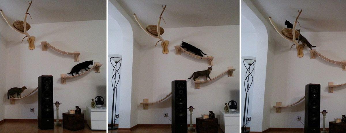 katzenm bel katzengerechte qualit tsm bel products i. Black Bedroom Furniture Sets. Home Design Ideas