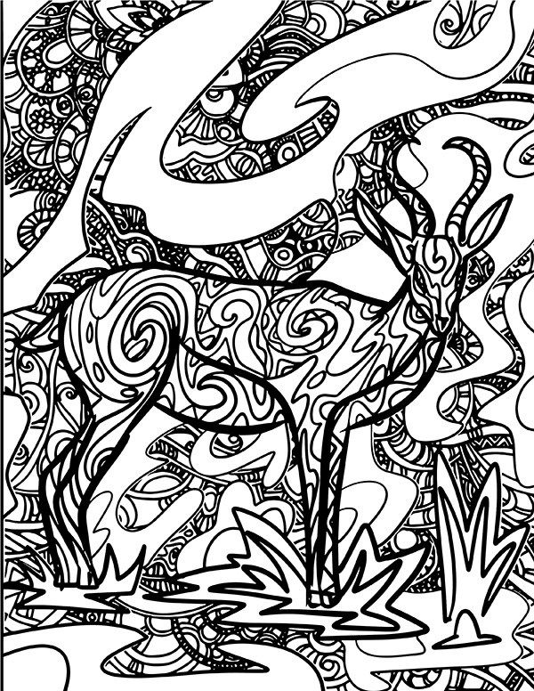 Gazelle Coloring Page Coloring Pages Color Coloring Pages To Print