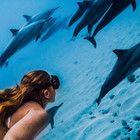 The best GoPro photos in the world, prepare to lose your breath - photo 3