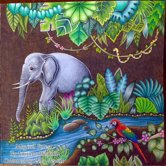 Peta Hewitt 12 08 2016 Johanna Basford Colouring Gallery Magical Jungle Johanna Basford Basford Coloring Coloring Books