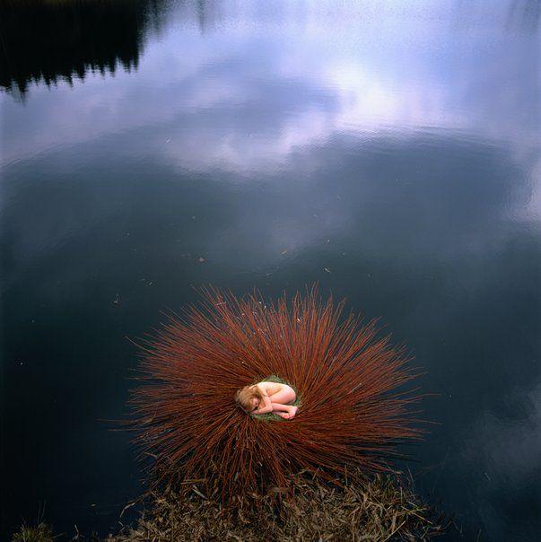 nid d'eau de Malika Capac