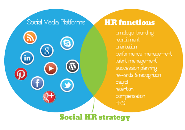 ServicesSectionSocialHrStrategyGraphicPng