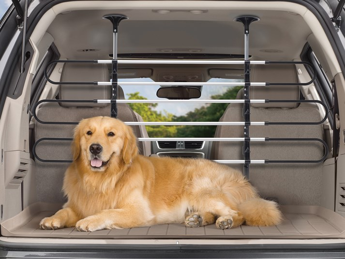 Hitting the road? Keep your puppy passenger safe and calm