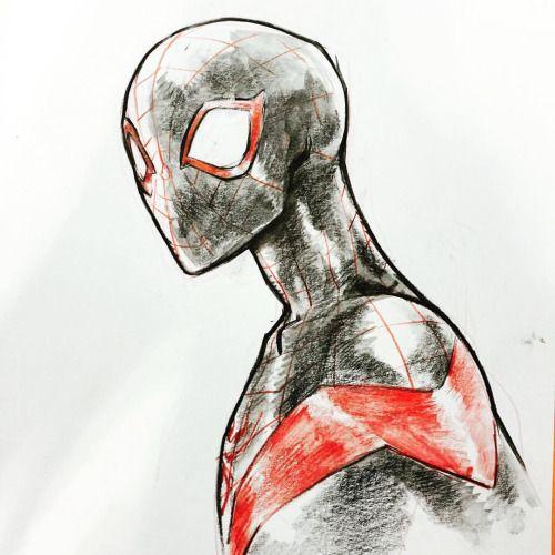Ultimate Spider-Man by Sara Pichelli *